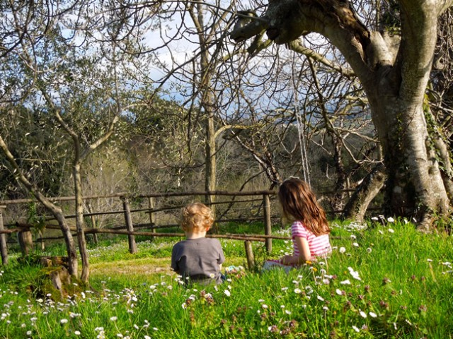 Stella and Romolo enjoying Spring