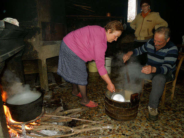 making scamorza in the smokehouse